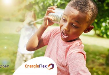 EnergieFlex sponsort NEC