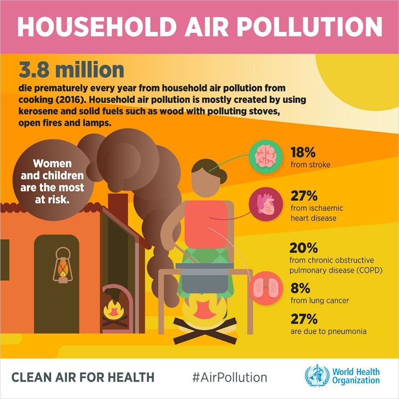 Infographic Household Air Pollution